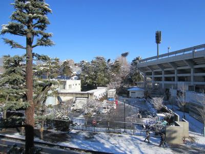 雪化粧の大宮公園