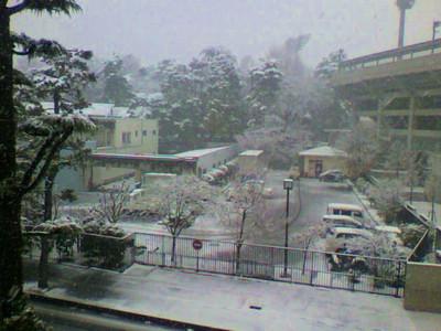 今日の大宮は朝から雪