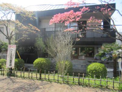 ハナミズキ通りの家 植栽工事
