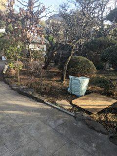 Y邸新築工事 設計打ち合わせと植栽調査